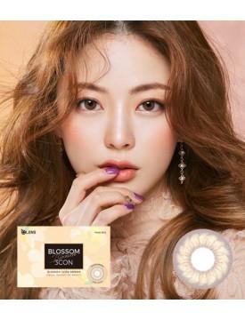 Blossom 3 Brown (1 month/2pc/box) 블라썸 3콘 브라운