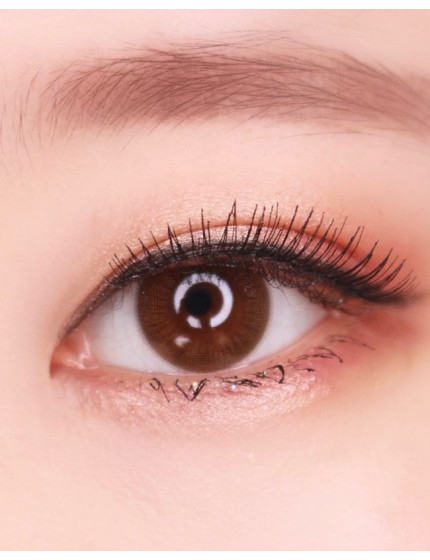 Natural Day Brown (1 Day/20pc/box)