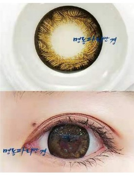 SCL Edge Brown Silicone Hydrogel (10-12 months/1 lens/vial)